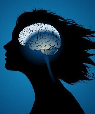 Клетки мозга – как высвободить свой потенциал